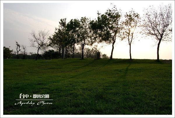 park6.jpg