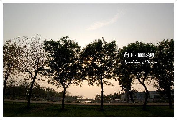 park7.jpg
