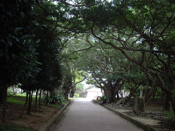 2009-10-21 玉陵