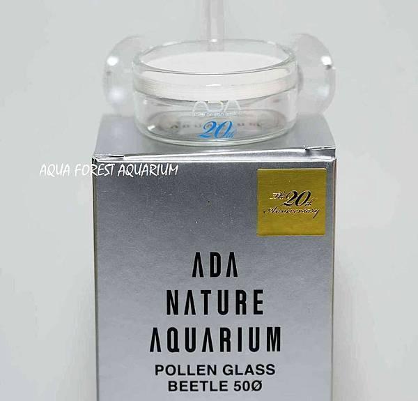 20y pollen glass beetle 50-2