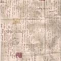 米色信件風格印花棉布