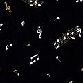 鋼琴音符寬幅布(上半)