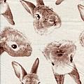 兔子頭印花布