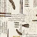鋼筆信件風格印花布