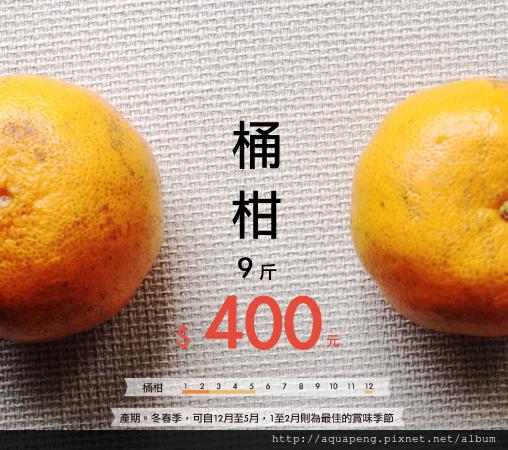 橘子售價海報
