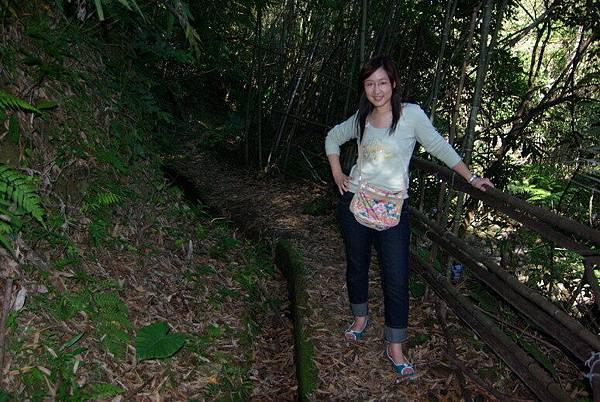 高遶部落竹林浴步道-8