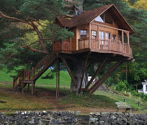 小時候的夢想是住在樹屋。