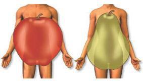 肥胖的類型.jpg