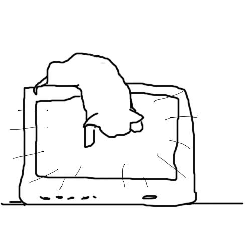 TV cat 01.jpg