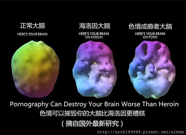 色情將會影響您的大腦