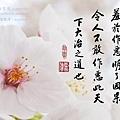 淨空長老墨寶 (倫常道德).jpg