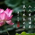 淨空長老墨寶 (信因果).jpg