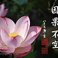 淨空長老墨寶 (因果不空).jpg