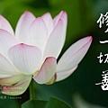 淨空長老墨寶 (斷一切惡 修一切善).jpg
