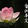 淨空長老墨寶 (自性本定).jpg