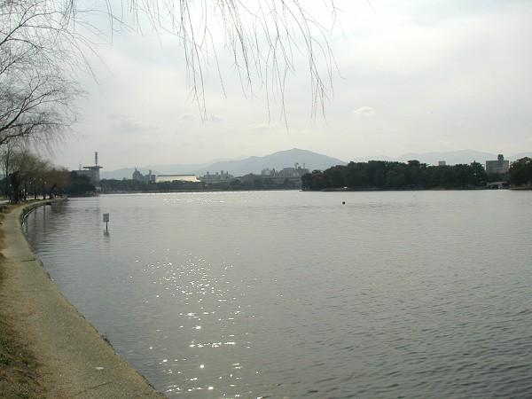 P2010022