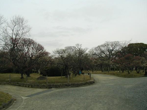 P2010027