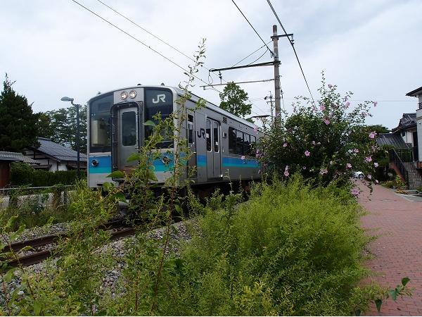 P9037725
