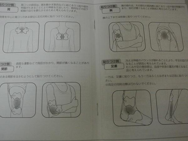 DSC_9868.jpg
