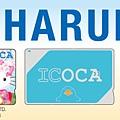 icoca_logo (1).jpg