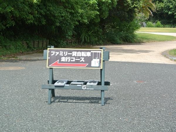 DSC_3982.jpg