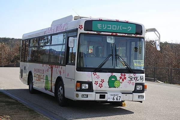 DSC_5481.jpg