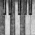 《琴鍵》,2005年,鉛筆、紙。