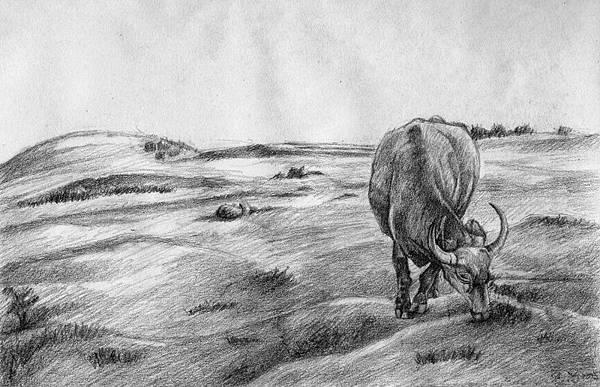 《原上草,吹又生》,2005年,鉛筆、紙。