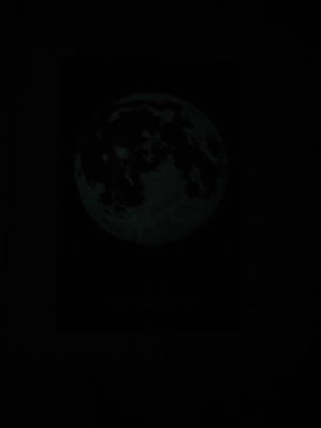 moon luminous.jpg