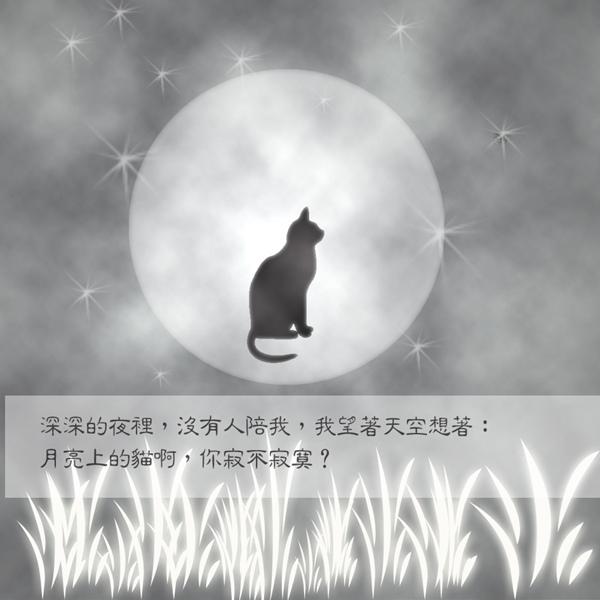 寂寞的貓拷貝.jpg
