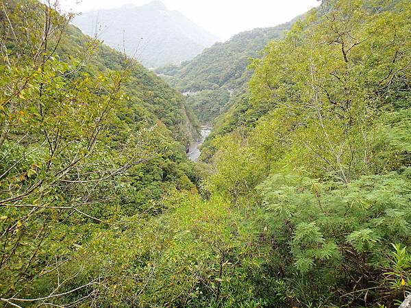 1-林相複雜有優美溪流.jpg