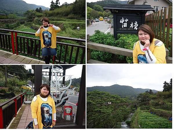 竹子湖1.JPG