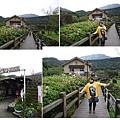 竹子湖2.JPG