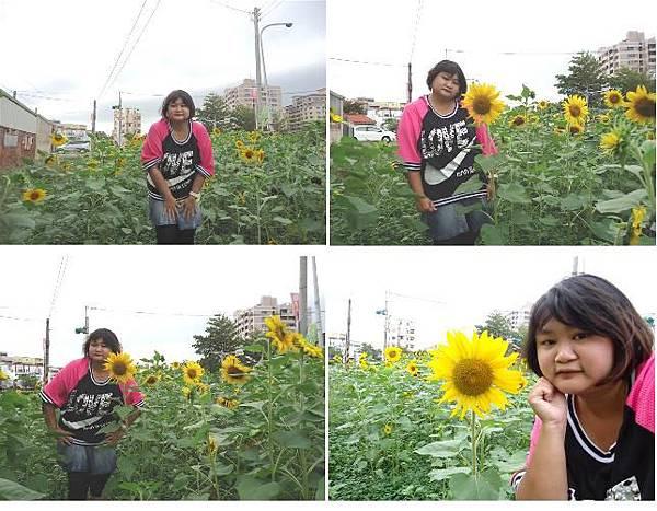 我與向日葵.JPG
