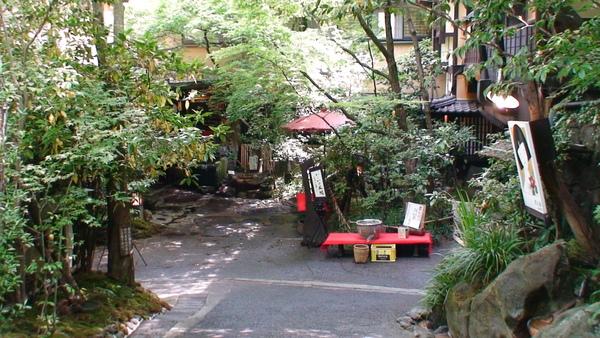 980520046隱藏於叢林裡的溫泉旅館.JPG