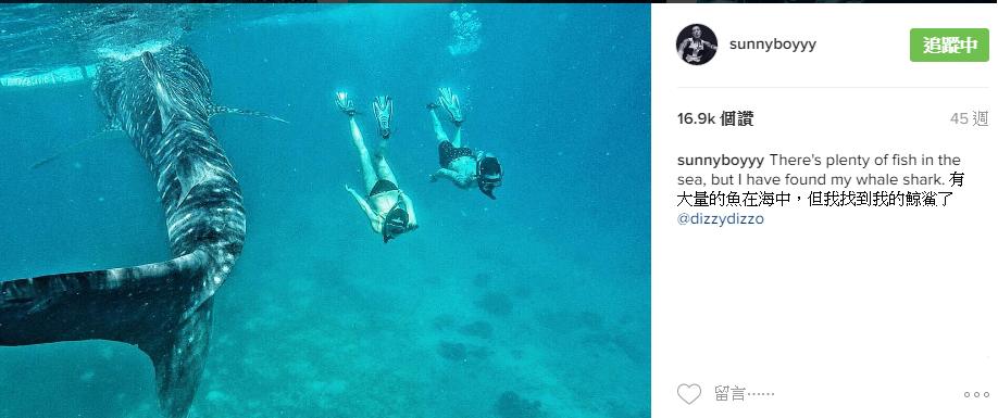 王陽明鯨鯊2.png
