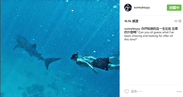 王陽明鯨鯊4.png