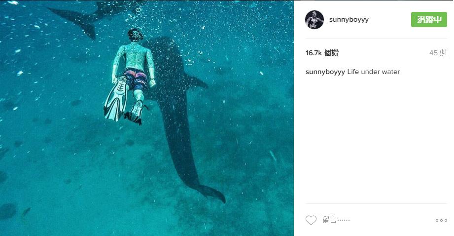 王陽明鯨鯊6.png