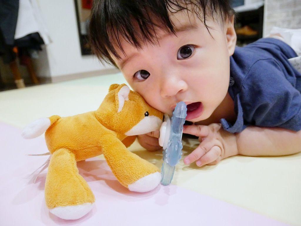 育兒好物嬰兒奶嘴推薦美國nookums搖鈴安撫奶嘴玩偶