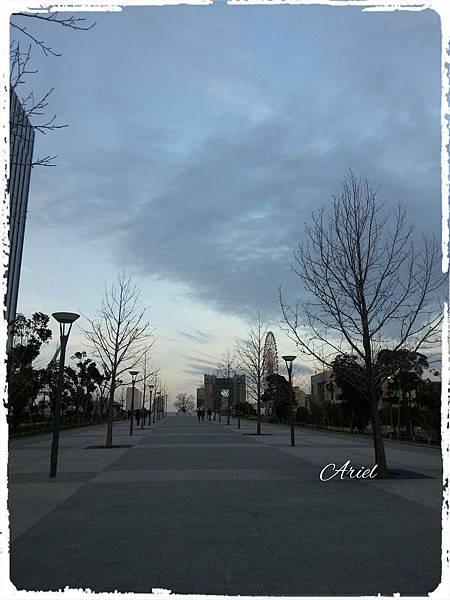 20150306_171737.jpg