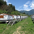 把露營帳棚架高挺聰明的,應該可以防濕氣跟蚊蟲吧~
