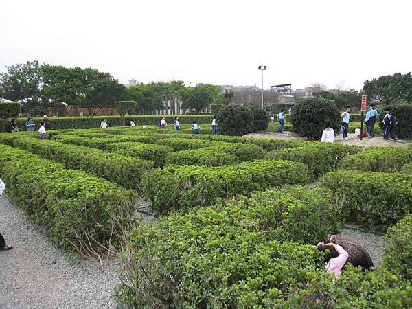 中間一圈是像這樣比較矮的迷宮,外圍的比較高,小孩子都玩得很開心 ^_^