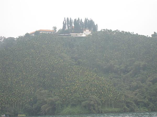 這張是想照遠方山上都是檳榔樹(多到嚇人),但還是一樣太遠所以不清楚