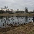 Lafayette Park 040