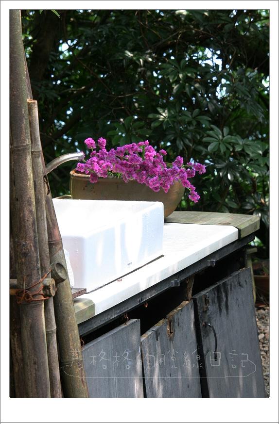擺在洗手台旁的小花.jpg