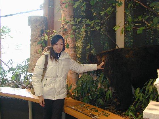 我與標本熊