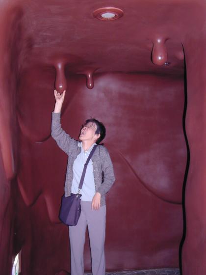 當Hiro 媽在巧克力洞中..
