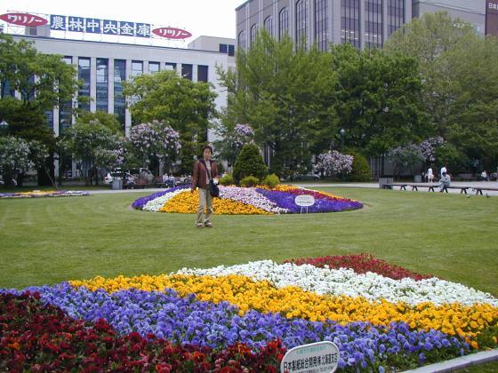 札幌大通公園的花圃
