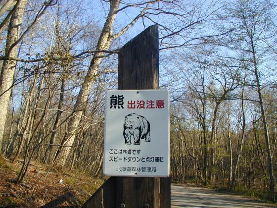 小心熊出沒!!