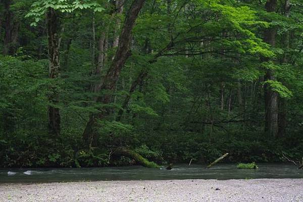 靜謐的小溪